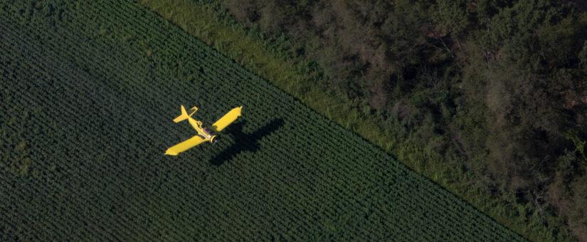 Клим Галиуллин: «Золотые крылья» – это не разовое мероприятие, а часть плана по развитию отрасли авиахимработ в стране»